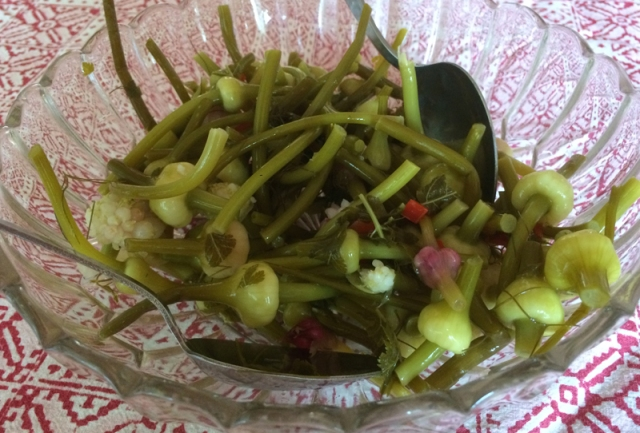 chigusaleaving_pickled_top_garlic